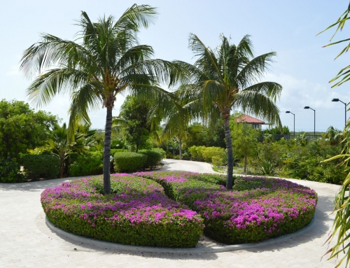 Crossing Palms Villa – Grounds